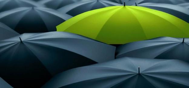 Umbrellas - standout